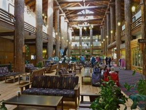 massive Douglas-fir columns in the Glacier Park Lodge lobby