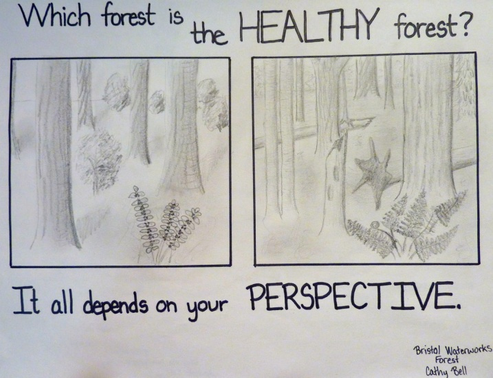 two-panel drawing by Cathy Bell, contrasting an open, parklike forest featuring even-aged trees, no regeneration, and invasive species in the understory (left) with a sloppy-looking forest featuring a variety of size and age classes, lots of woody debris, and abundant wildlife sign