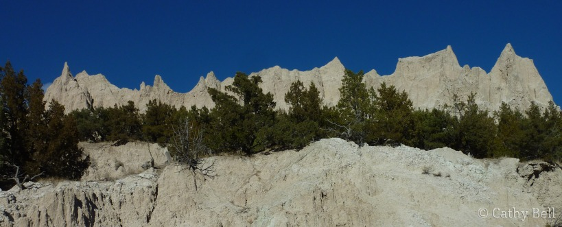 dark green junipers against the tan formations in Badlands National Park