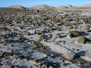 rounded cobbles from an ancient river in Badlands National Park