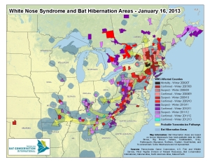 map showing spread of white-nose syndrome