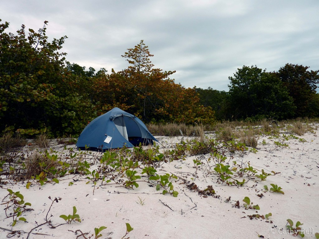 This tent has been home on many joy-filled backcountry trips, including to Tiger Key in Everglades National Park ...