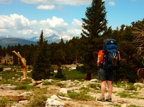 hiker carrying dark blue Gregory Petit Dru Pro backpack, forest and mountains in background