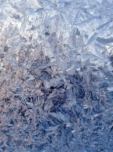 Cold winter nights produce beautiful feathers of frost on park windowpanes.