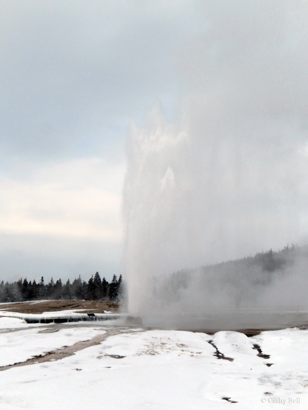 Beehive Geyser erupts on January 10, 2014.
